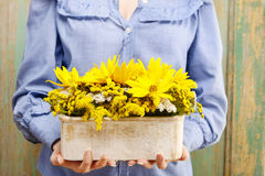 Woman holding arrangement of sunflowers in wooden box Stock Image