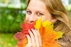 Woman holding autumn leaf. Woman holding colorful autumn leaf in the hand Royalty Free Stock Images
