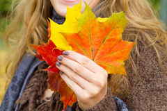 Woman holding autumn leaves Stock Photography