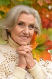 Woman holding autumn leaves Royalty Free Stock Photo