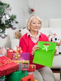 Woman Holding Bag While Sitting By Christmas Stock Images