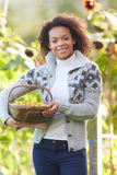 Woman Holding Basket Of Crab Apples In Garden Royalty Free Stock Images