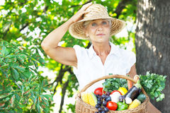 Woman holding a basket with fruits and vegetables Royalty Free Stock Photos