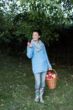 Woman holding basket full of apples Royalty Free Stock Image