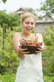 Woman holding basket with strawberries Royalty Free Stock Photos