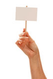 Woman Holding Blank White Sign Isolated on White Stock Images