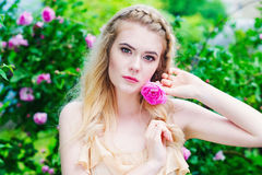 Woman holding blooming rose flower Royalty Free Stock Photos