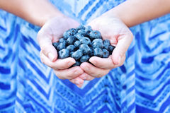Woman Holding Blueberries stock photos