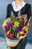 Woman holding bouquet of beautiful flowers in hands. 8 March woman day. Tulip, antirrhinum, celosia, brunia, trachelium. Vertical photo stock images