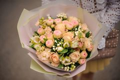 Woman holding bouquet of champagne color roses. Girl in the white shirt holding in her hands a beautiful bouquet of champagne color roses in the gift paper in royalty free stock photography