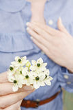 Woman holding bouquet of tiny white flowers (ornithogalum arabic. Um). Spring flowers Stock Photo