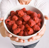 Woman holding bowl of raspberries Royalty Free Stock Images