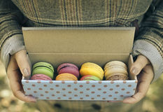 Woman holding box with colorful French macaroons in her hands Stock Photos