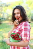 Woman holding a bucket of strawberries and eating outdoors Stock Images