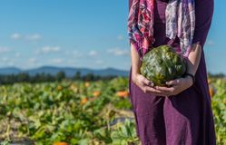 Woman Holding Bumpy Pumpkin. With Copy Space to left Stock Images
