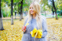 Woman holding bunch of yellow autumn leaves Royalty Free Stock Image