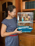 Woman holding a cage with blue budgie Stock Images