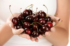 Woman holding cherries Stock Images