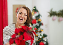 Woman holding Christmas rose near Christmas tree Royalty Free Stock Photography