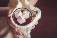 Woman holding cup of cocoa Royalty Free Stock Images