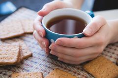 Woman holding a Cup of hot tea or coffee, lie next to cookies, close-up stock photo