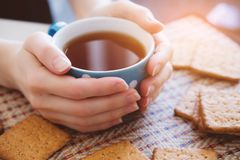 Woman holding a Cup of hot tea or coffee, lie next to cookies, close-up stock photos