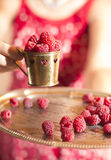 Woman holding a cup of raspberries. Woman in red dress holding a cup of raspberries Royalty Free Stock Images