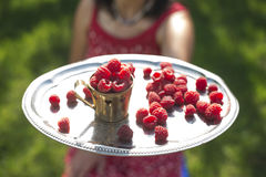 Woman holding a cup of raspberries. Woman in red dress holding a cup of raspberries Stock Images