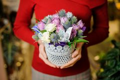 Woman holding a cute little pot with flower composition for the Valentines day. Woman in a red sweater holding a cute little pot with flower composition for the stock images