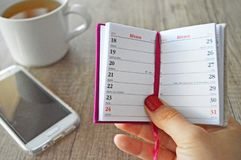 Woman holding diary stock photo