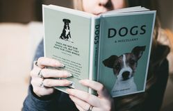 Woman Holding Dogs a Miscellany Book Royalty Free Stock Photos