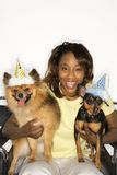 Woman holding dogs wearing party hats. Stock Image