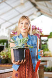 Woman holding echeveria in her hand Royalty Free Stock Photos