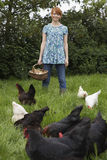 Woman Holding Egg Basket By Hens In Garden Royalty Free Stock Image