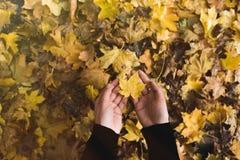 Woman holding fallen leaf Stock Photo