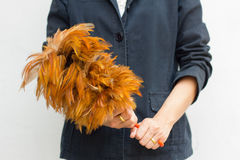 Woman holding a feather duster. Focus on hand and duster. Royalty Free Stock Photo
