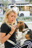 Woman holding and feeding beagle puppy dog Royalty Free Stock Photos