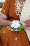 Woman holding a flower. Stock Image