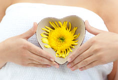 Woman holding a flower in her hands Stock Images