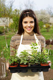 Woman holding flower plant in garden Stock Photo