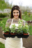Woman holding flower plant in garden Stock Images