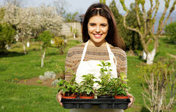 Woman holding flower plant Stock Photography