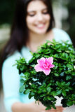 Woman holding flower in a pot Stock Photo