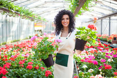Woman holding flower pots Stock Photos