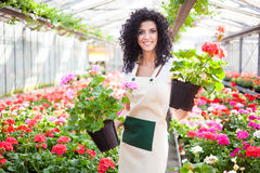 Woman holding flower pots. Beautiful woman holding flower pots Royalty Free Stock Photography