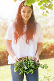 Woman holding freshly harvested vegetables royalty free stock photos