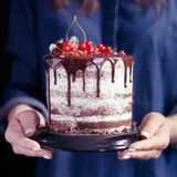 Woman holding a fruit cake, selective focus Royalty Free Stock Image