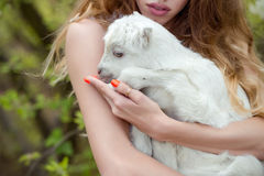 Woman holding goat Royalty Free Stock Image