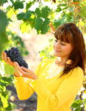 Woman holding grape in vineyard Royalty Free Stock Image