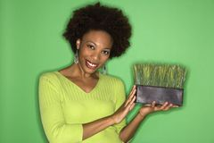 Woman holding grass stock photos